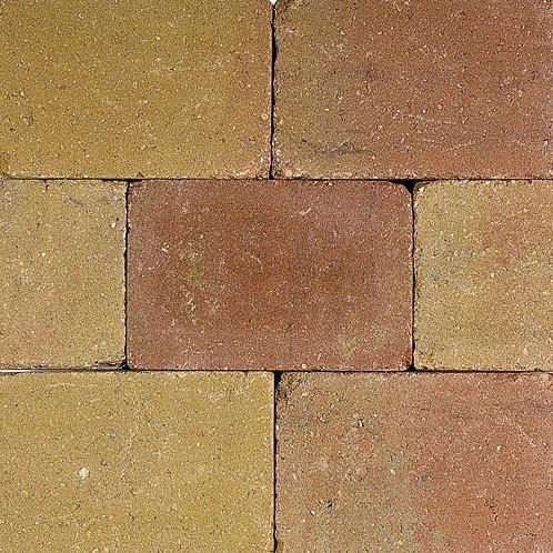Pebblestones 15x20x6cm Lizard geel/terra