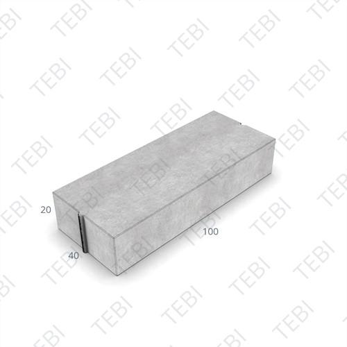 Trottoirband 40x20x100cm grijs