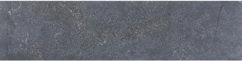 Asian Bluestone vijverrand blauw gezoet 3x25x100cm