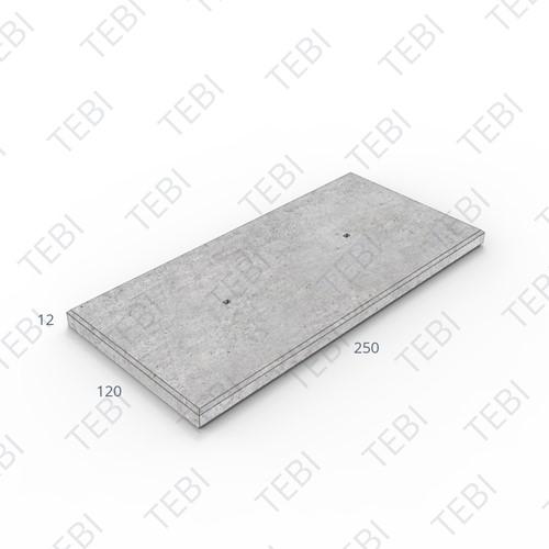 Industrieplaat ZHR 250x120x12cm DN