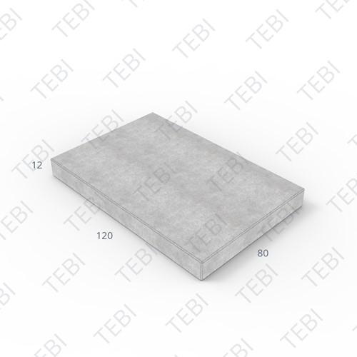 T4 Verhardingsplaat 120x80x12cm