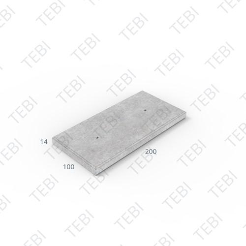 Industrieplaat ZHR 200x100x14cm EN B60